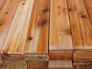 Cedar-Lattice